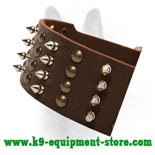 Nickel Spikes and Brass Studs Hand Set on Leather Collar for Stylish Look of Your Canine