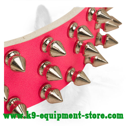 Nickel Spikes on Safe Walking Pink Leather Collar