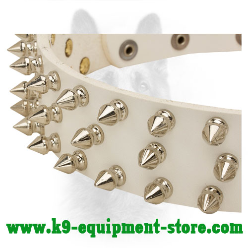 Nickel Spikes on Walking in Style White Leather Collar