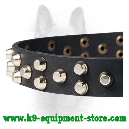 Nickel Studs Riveted to Leather K9 Breed Collar