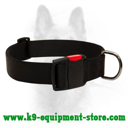 Nylon Dog Collar for K9 Walking