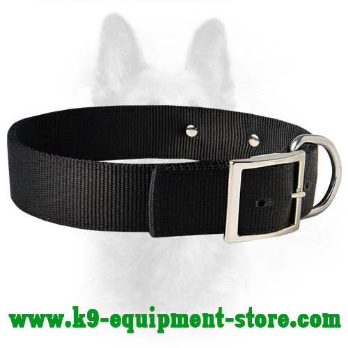Nylon Dog Collar for K9 All Weather Walking