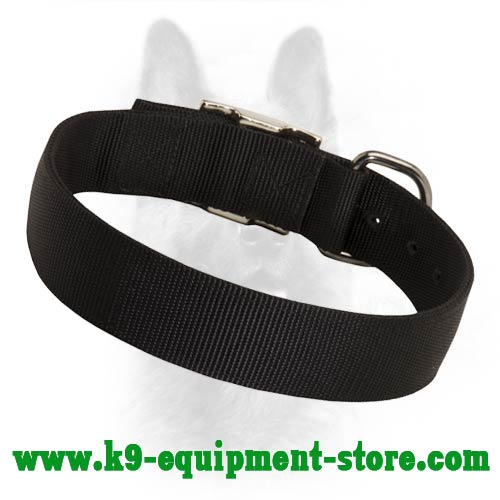 Nylon Dog Collar for Canine Walking and Training