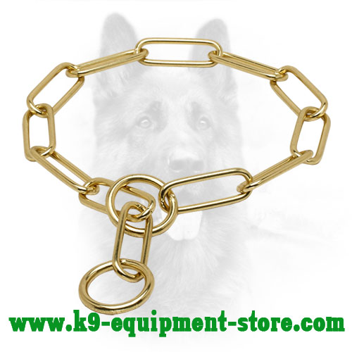 Canine Brass Choke Collar with Large Links