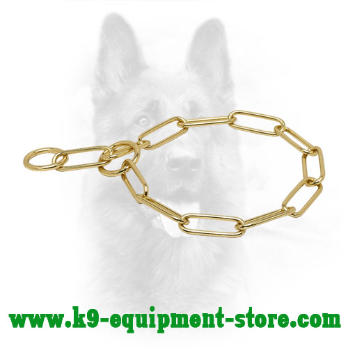Canine Brass Choke Collar for Training