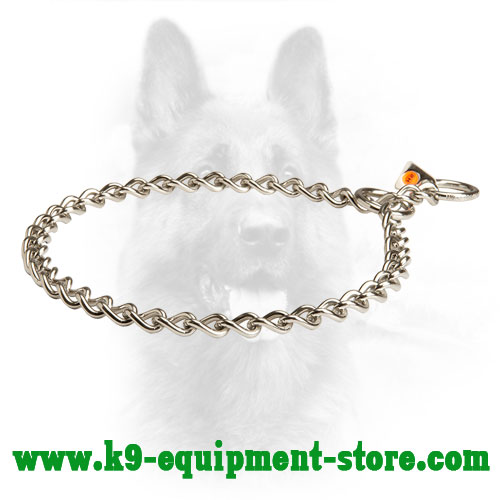 Stainless Steel Canine Choke Collar for Walking and Training