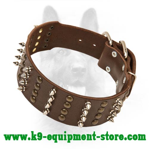 Daily Walking Leather Collar for Canine with Rust-proof Decoration