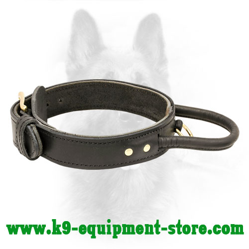 Leather Dog Collar for K9 Protection Training