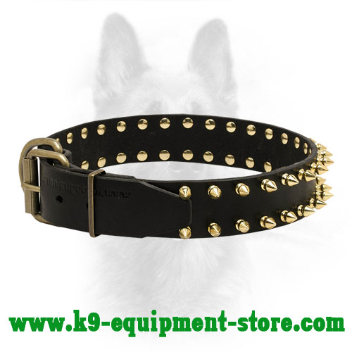 Leather Canine  Collar with Riveted Brass Spikes