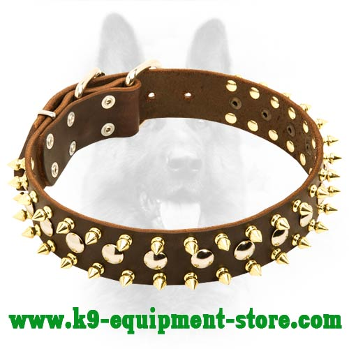 Leather K9 Dog Collar with Durable Fittings