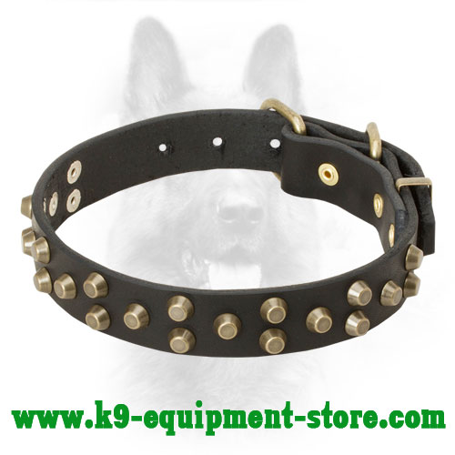Canine Leather Collar with Gold-like Pyramids