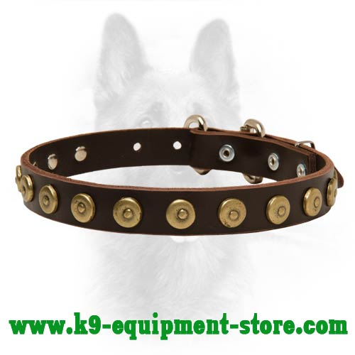 Leather Dog Collar for Canine Obedience Training