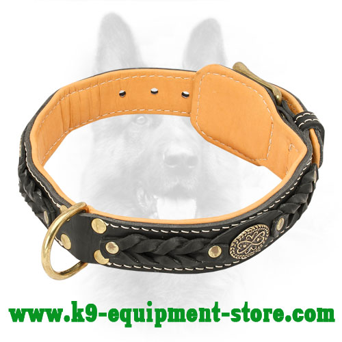 K9 Leather Collar with Brass Brooch and D-ring
