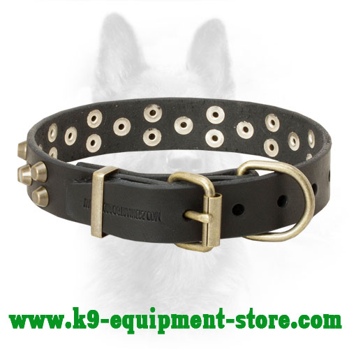 Canine Collar Leather with Stitched Brass Buckle and D-ring