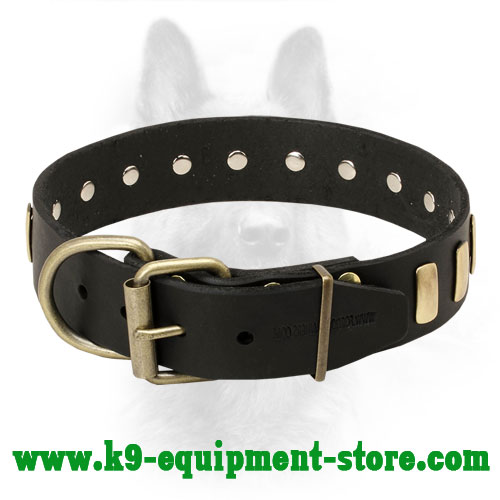Canine Leather Collar with Easily Adjustble Buckle and D-ring