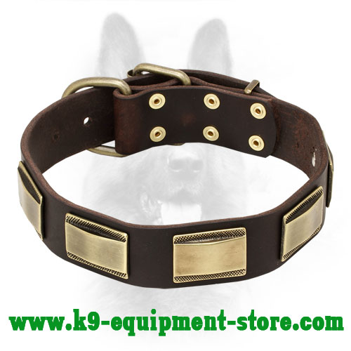 Leather Police Dog Collar with Massive Brass Plates
