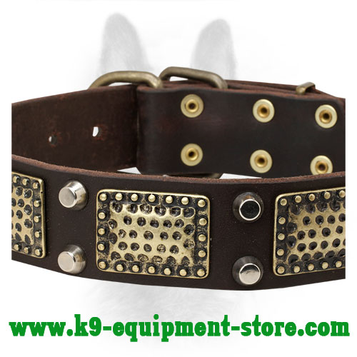 Leather Canine Collar with Nickel Cones and Brass Plates