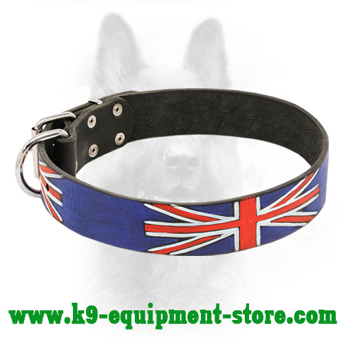 Leather Canine Collar with Steel Nickel Plated Fittings