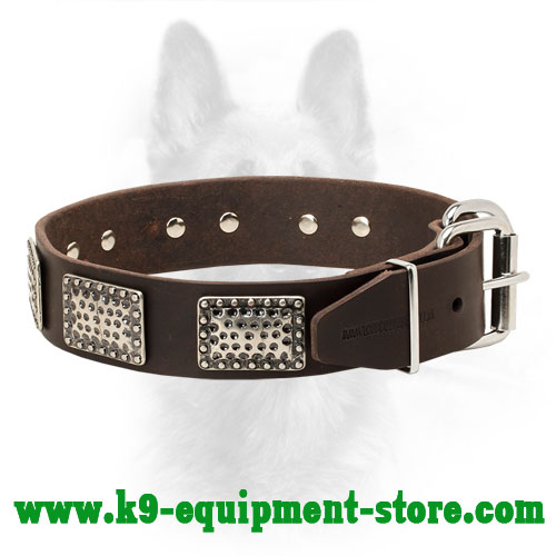 Adjustable K9 Leather Collar with Nickel Buckle and D-ring