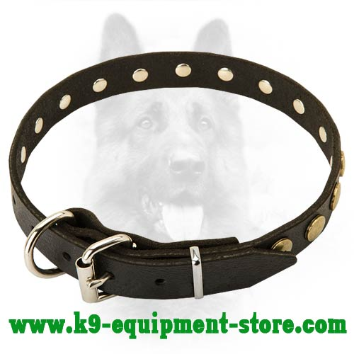 Leather Police Dog Collar with Nickel Hardware