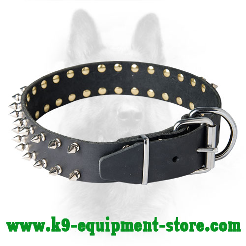 Canine Leather Collar with Silver-like Fittings