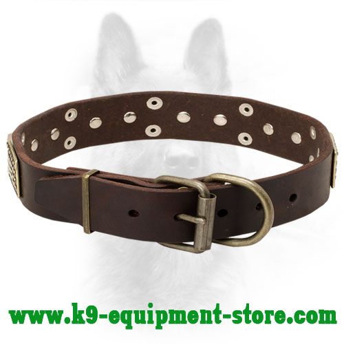 K9 Leather Collar with Rust-proof Hardware