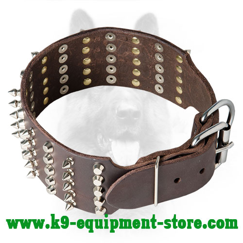 Canine Leather Collar with Adjustable Nickel Buckle and  D-ring