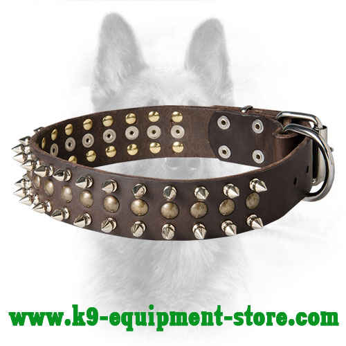Leather K9 Collar with Nickel Spikes and Brass Half Ball Studs