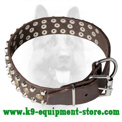Leather K9 Collar with Firm Nickel Hardware
