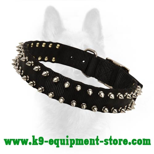 Nylon Police Dog Collar with Durable Fittings
