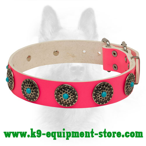 Pink Leather Collar for Canine Glamorous Walking