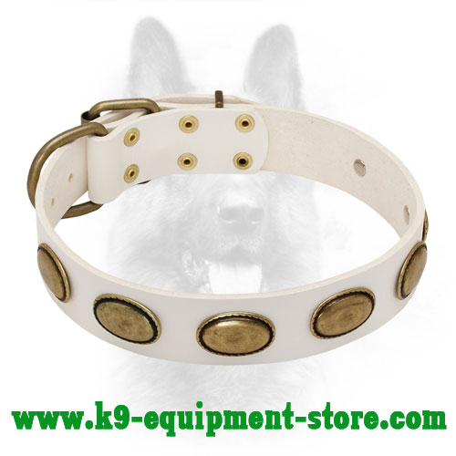 White Leather K9 Collar with Rust-proof Massive Plates