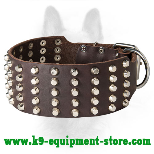 Wide Leather Canine Collar with Riveted Pyramids