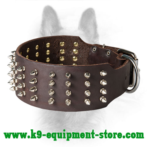 Wide Spiked Leather Collar for Canine Walking in Style