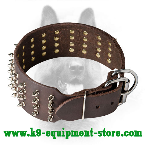 Spiked Canine Wide Leather Collar with Rust Resistant Hardware