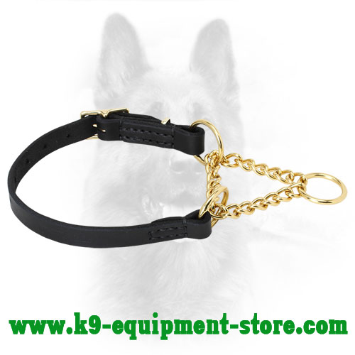 Canine Leather Martingale Collar for Improving Obedience