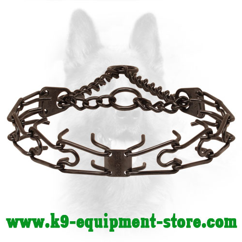 Canine Pinch Collar Made of Black Stainless Steel