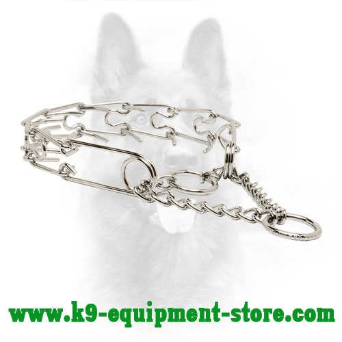Canine Pinch Collar with 2 Chrome Plated Steel Rings