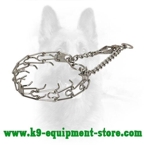 Canine Pinch Collar Made of Chrome Plated Steel