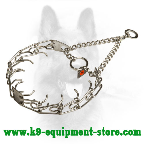 Stainless Steel Canine Pinch Collar for Obedience Training