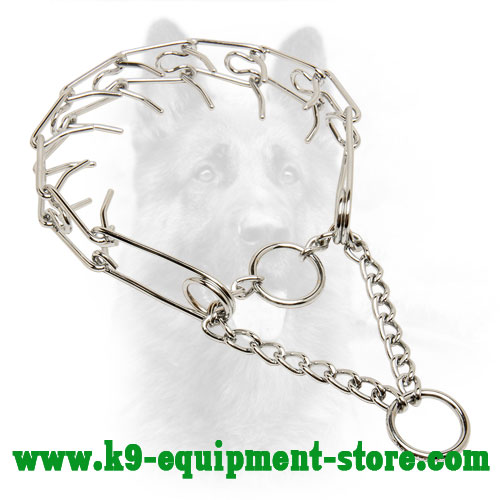 Canine Prong Collar with Chrome Plated Chain