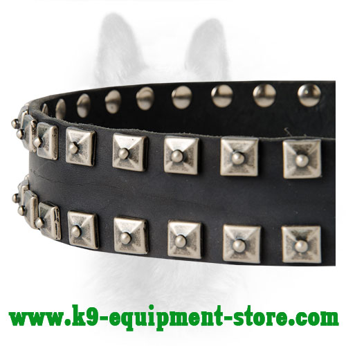 Square Studs on Walking in Style Leather K9 Collar