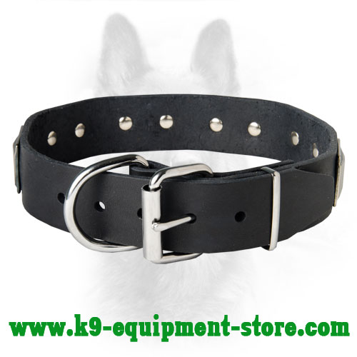Steel Nickel Plated Buckle and D-ring Riveted to Leather K9 Collar