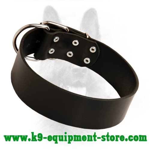 Wide Leather Canine Dog Collar for Obedience Training