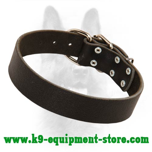 Wide K9 Dog Collar Leather for Off Leash Training