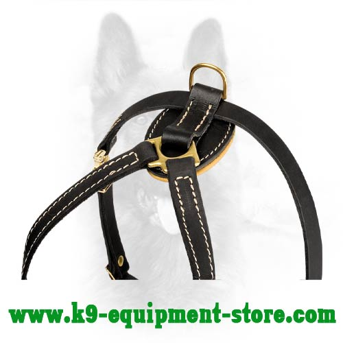 Brass D-ring For Leash Attachment on Dog Harness
