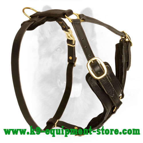 Leather Canine Harness with Brass D-ring for Leash Attachment