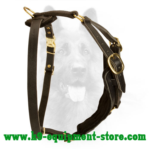 Leather Harness for Canine with Back Plate for Comfy Walking