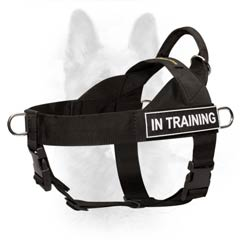 Canine Nylon Harness with Patches for Dog Identification