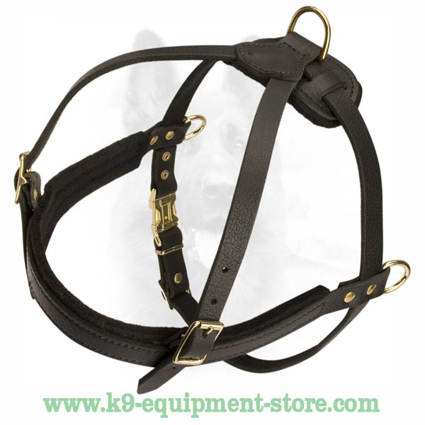 Easily Adjustable In 3 Ways K9 Leather Dog Harness